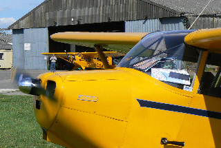 Cub at Sherburn in Elmet 2014